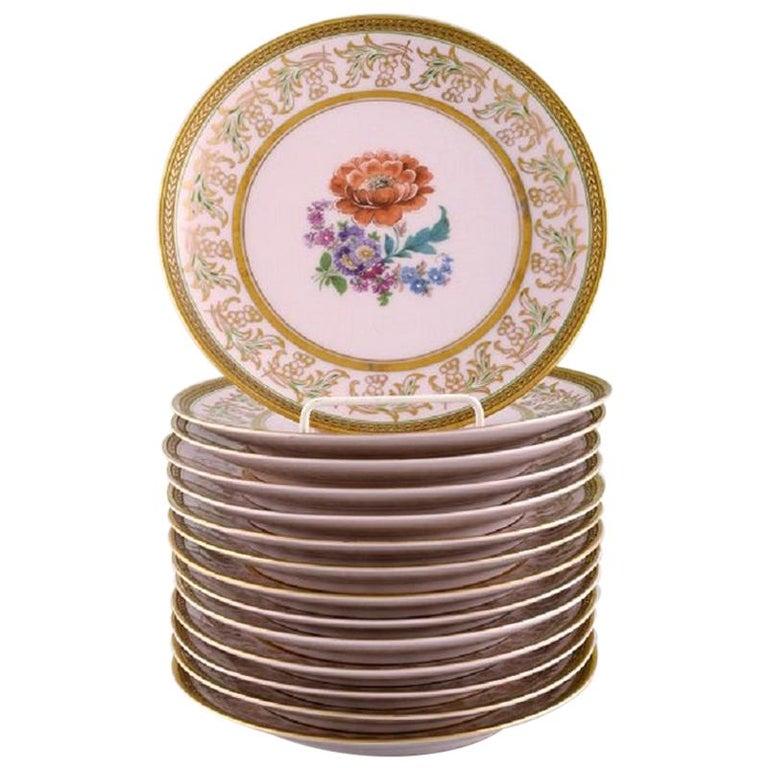 Johann Haviland Bavaria, Germany, 14 Decorative Plates in Hand Painted Porcelain For Sale