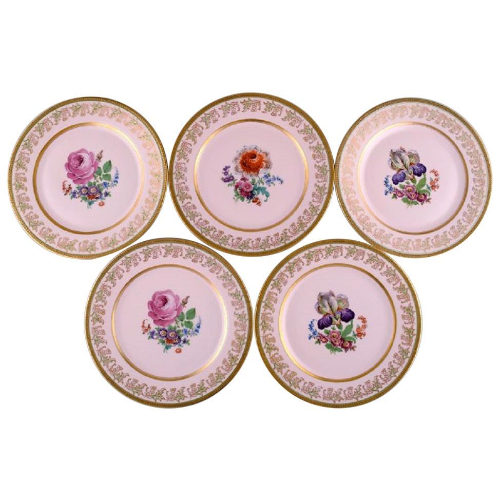 Johann Haviland Bavaria, Germany, Five Large Decorative Plates in Porcelain