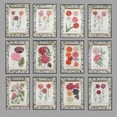 18th century botanical engravings in decalcomania frames, set of twelve.
