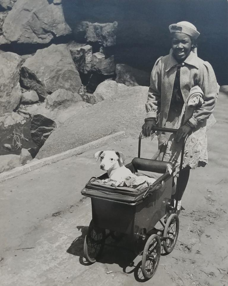 Harlem (Girl with Dog in Baby Carriage)