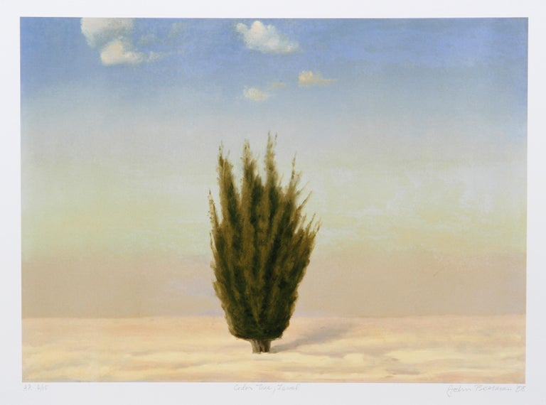 John Beerman Landscape Print - Cedar Tree, Israel