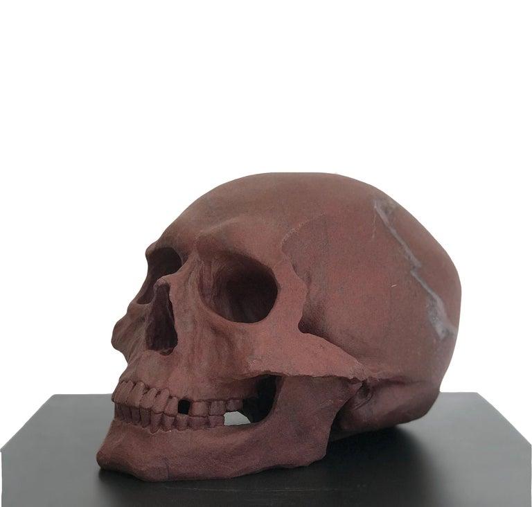 Human Skull II  - Sculpture by John Bizas