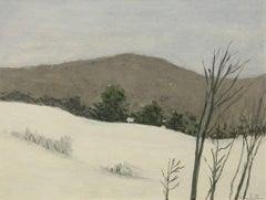 Winter, Upstate New York