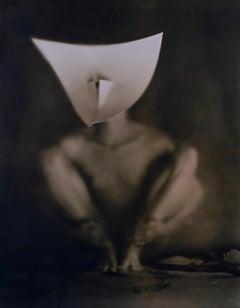 Untitled 20246 - lith silver gelatin print