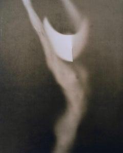 Untitled 20247 - lith silver gelatin print
