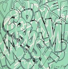 Crash Screen Print