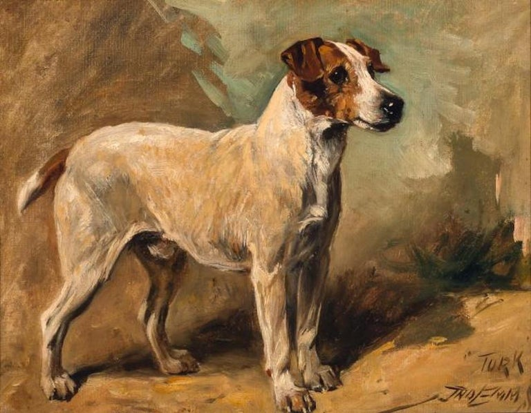 John Emms dog painting of 'Turk' A Jack Russell Terrier - Painting by John Emms