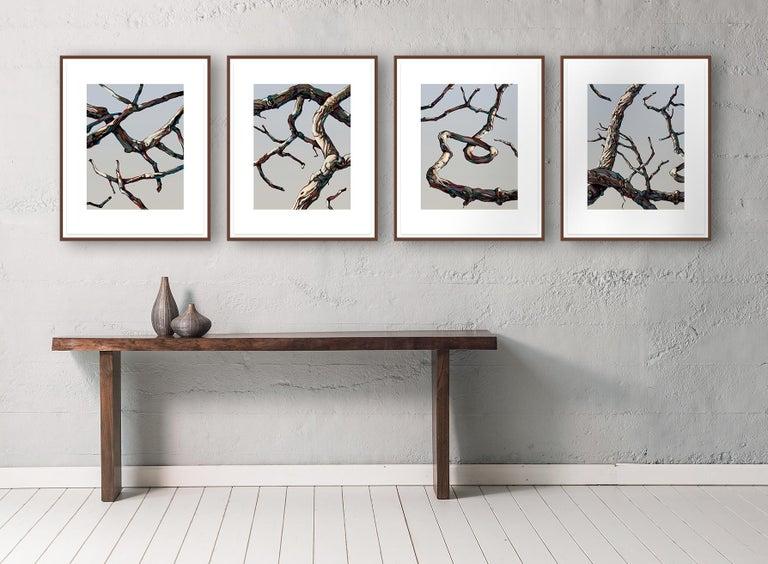 Hardwood Suite #4 - Gray Figurative Print by John Fincher