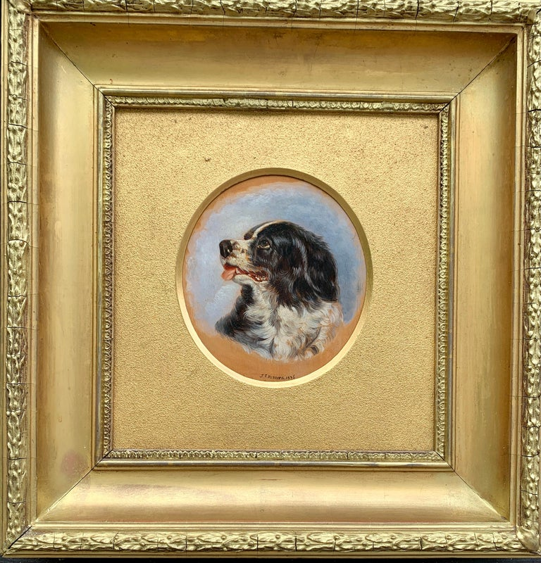 English Antique oil painting of an English Spaniel dog head - Painting by John Frederick Herring Jr.
