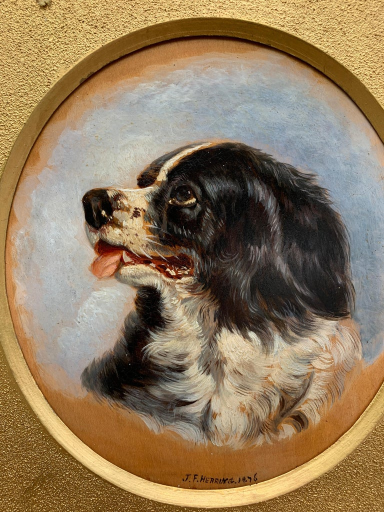 English Antique oil painting of an English Spaniel dog head - Victorian Painting by John Frederick Herring Jr.
