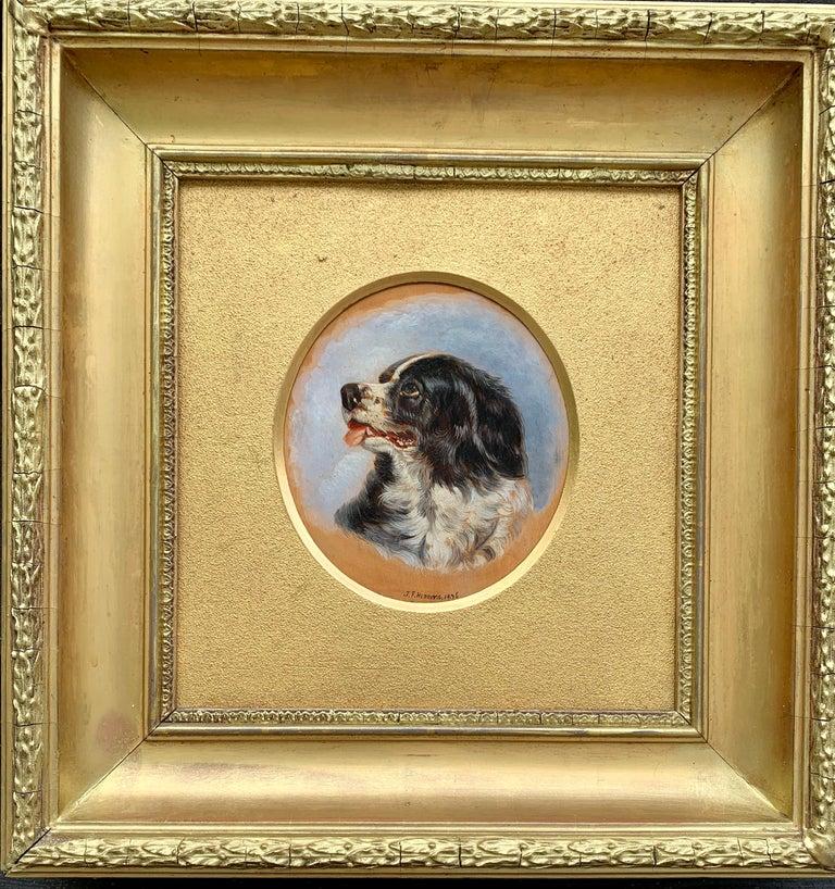 John Frederick Herring Jr. Portrait Painting - English Antique oil painting of an English Spaniel dog head