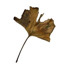John Iversen Patinated Bronze Gingko Leaf Brooch