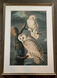 """Snowy Owls"",  Oppenheimer Editions, 2006, Ed 200 on Watercolor paper"