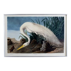 White Heron Plate #386 Havell Oppenheimer Edition
