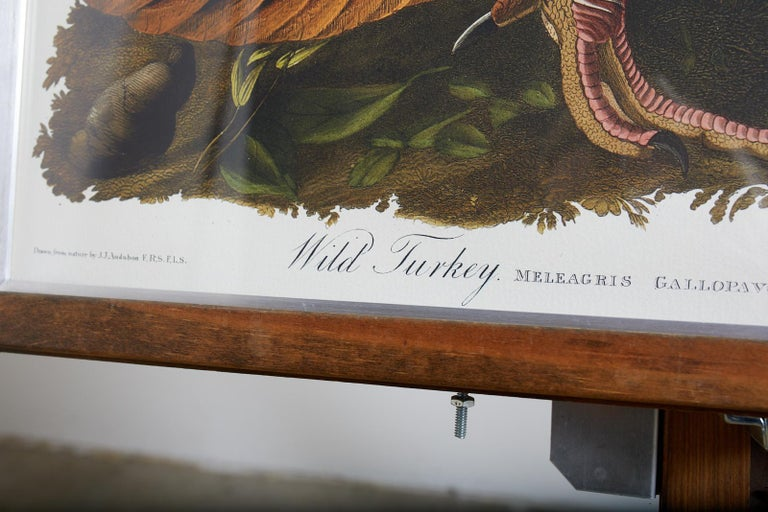 Wild Turkey Plate #1 Havell Oppenheimer Edition For Sale 8