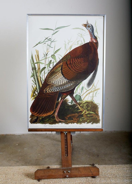 Wild Turkey Plate #1 Havell Oppenheimer Edition - Naturalistic Print by John James Audubon