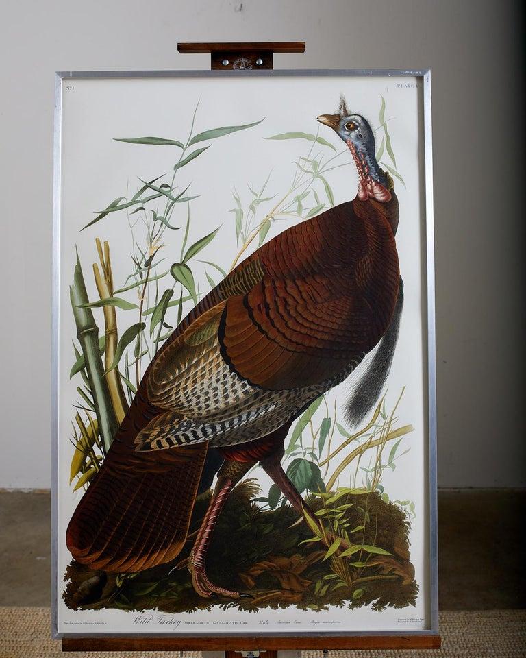 Wild Turkey Plate #1 Havell Oppenheimer Edition - Print by John James Audubon