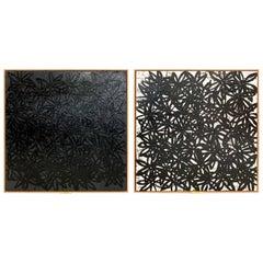 John O'Hara, Daisies, Black and White, Encaustic Paintings