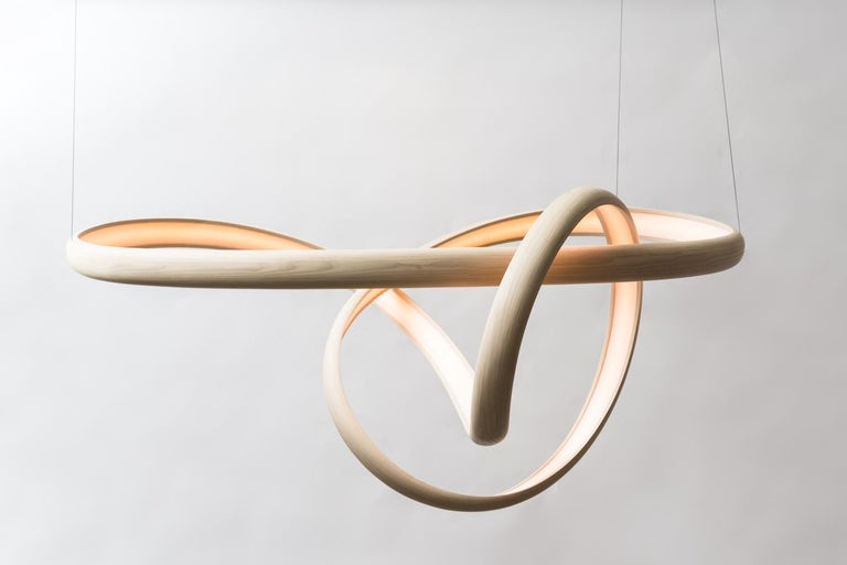American John Procario, Freeform Series Light Sculpture XVII, USA For Sale
