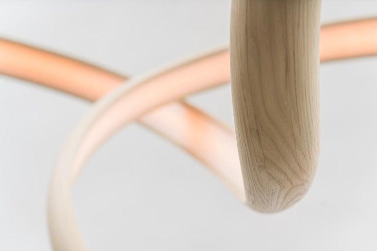 John Procario, Freeform Series Light Sculpture XVII, USA For Sale 2