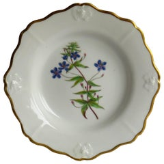 John Ridgway Porcelain Botanical Plate Hand Painted Italian Pimpernel circa 1820