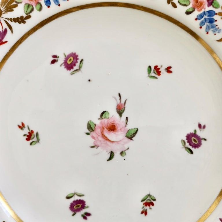 Hand-Painted John Rose Coalport Porcelain Plate, Improved Feldspar, Regency Pattern ca 1825