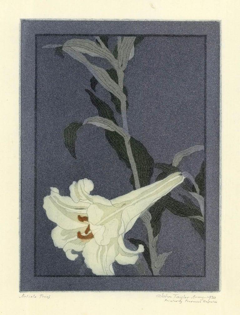 John Taylor Arms Still-Life Print - Lily