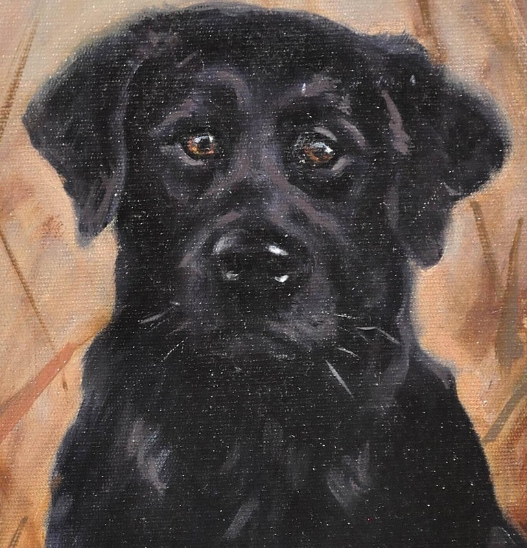 Black Labrador. Original Dog Oil Painting. John Trickett. 20th Century.  For Sale 11