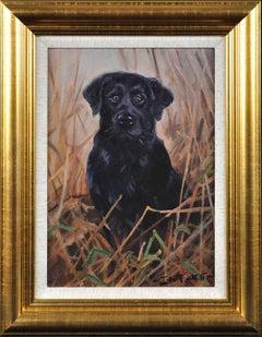 Black Labrador. Original Dog Oil Painting. John Trickett. 20th Century.
