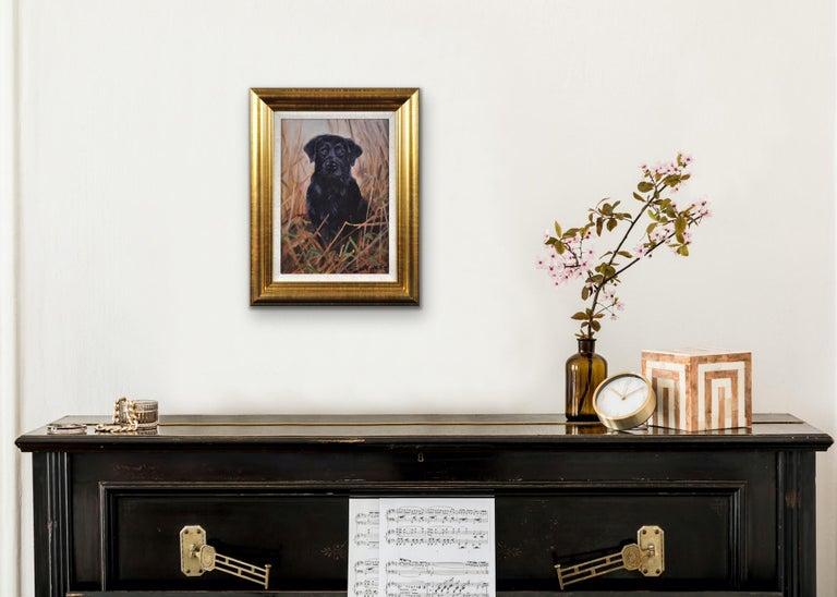 Black Labrador. Original Dog Oil Painting. John Trickett. 20th Century.  For Sale 4