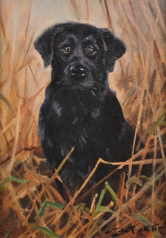 Black Labrador. Original Dog Oil Painting. John Trickett. 20th Century.