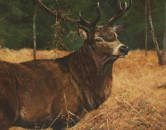 Stag in Woodland Landscape Beautiful Autumn Colours - Original Oil Painting