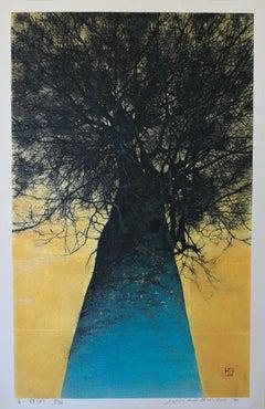 High Treetop (A)