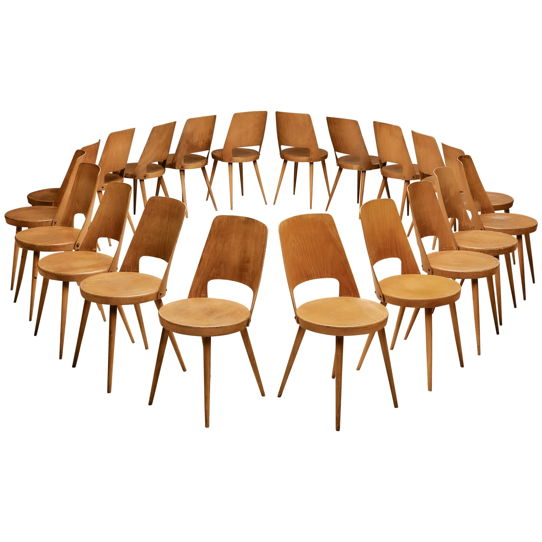 Jomaine Baumann Large Set of 'Mondor' Dining Chairs