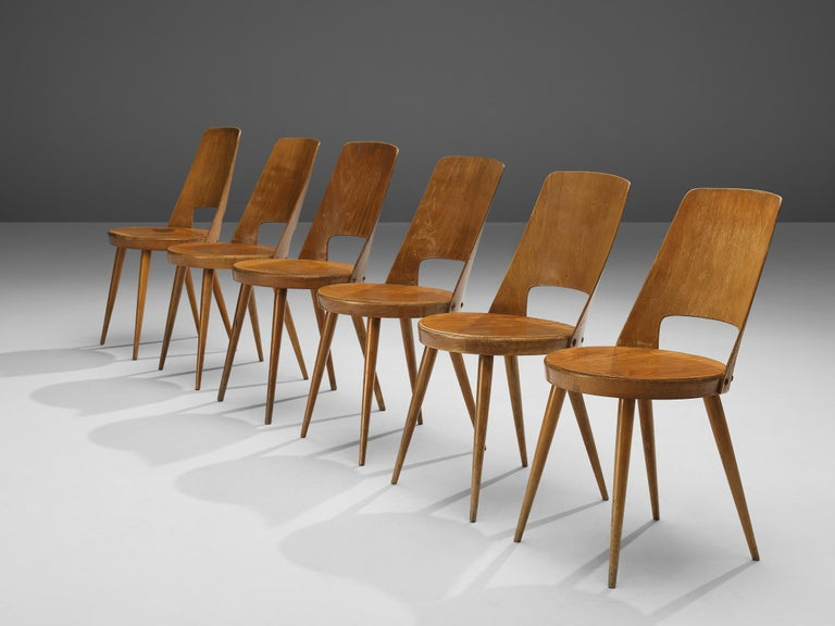 Jomaine Baumann 'Mondor' Dining Chairs in Plywood In Good Condition For Sale In Waalwijk, NL