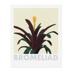 Bromeliad, Screenprint, Contemporary Art, Still Life, 21st Century
