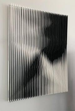 'Black Undulation' Diptych, Kinetic Art,  PVC and Plexiglass Sculpture