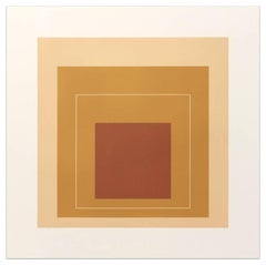 White Line Squares (Series II), XVI