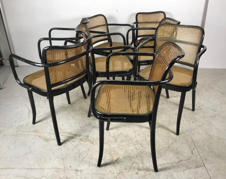 Josef Hoffmann for Stendig Bentwood Cane Dining Chairs, Set of Eight For Sale 4