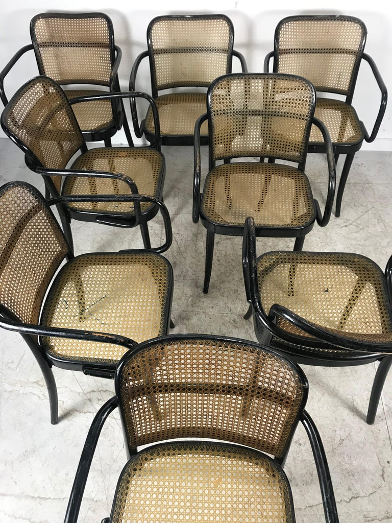Bauhaus Josef Hoffmann for Stendig Bentwood Cane Dining Chairs, Set of Eight For Sale