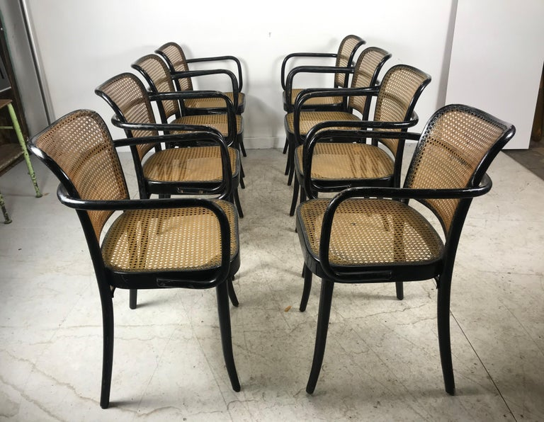Czech Josef Hoffmann for Stendig Bentwood Cane Dining Chairs, Set of Eight For Sale