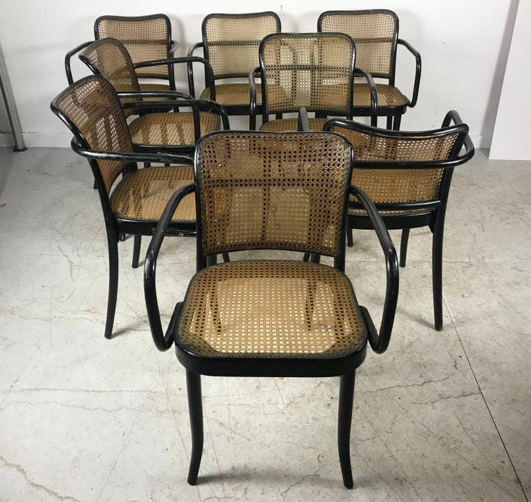 Mid-20th Century Josef Hoffmann for Stendig Bentwood Cane Dining Chairs, Set of Eight For Sale