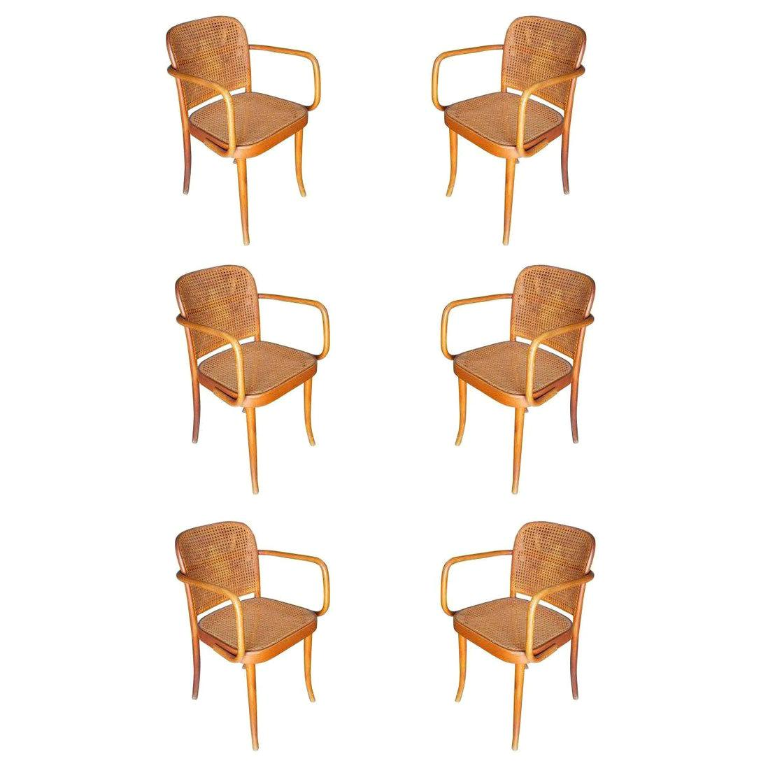 Josef Hoffmann for Stendig Bentwood Cane Dining Chairs, Set of Six