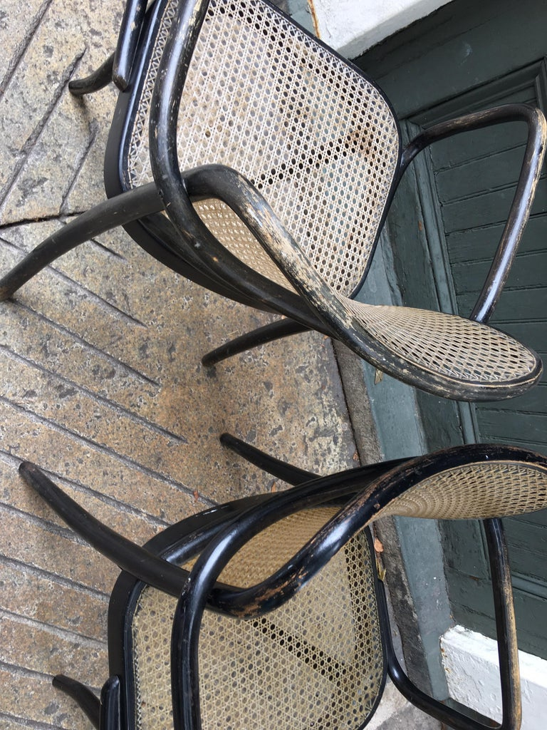 Josef Hoffmann Prague 811 Armchairs by Stendig In Good Condition For Sale In Philadelphia, PA