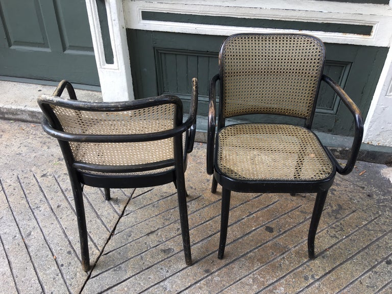 Mid-20th Century Josef Hoffmann Prague 811 Armchairs by Stendig For Sale
