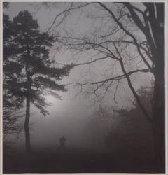 Forest Mionsi in the fog - Original Gelatin Silver Photograph, c. 1950