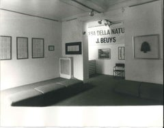 Difesa della Natura - 1980s - Joseph Beuys - Photo - Contemporary Art