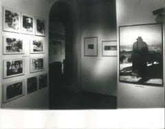 Difesa della Natura - 1980s - Joseph Beuys - Photo - Contemporary Art