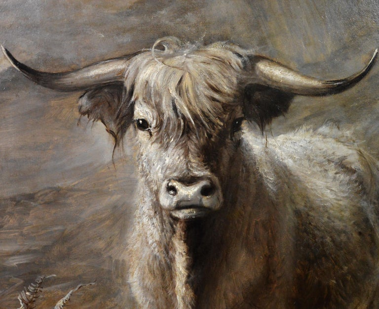 The Highlander - 19th Century Portrait Oil Painting of Scottish Highland Bull For Sale 2