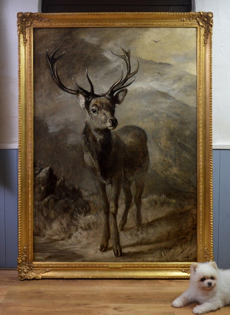The Young Pretender - Huge 19th Century Scottish Oil Painting of Highland Stag For Sale 1